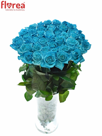 Modrá růže LIGHT BLUE VENDELA