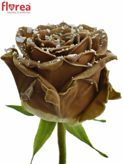 ROSA CHOCOLAT BONBON CHOCOLAT SPRINKLE 70cm