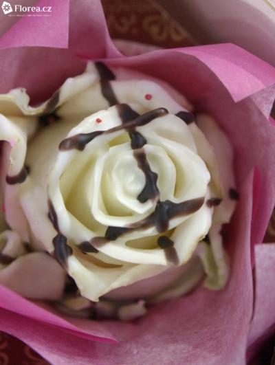 ROSA CUPCAKE CHOCOLATE STRIP WHITE