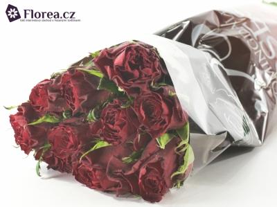 Červená růže ASANTE 50cm