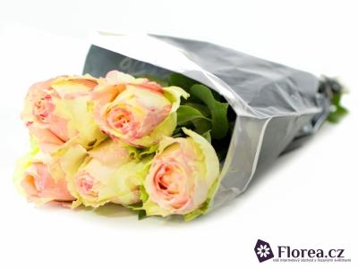 Žíhaná růže FIESTA 60cm