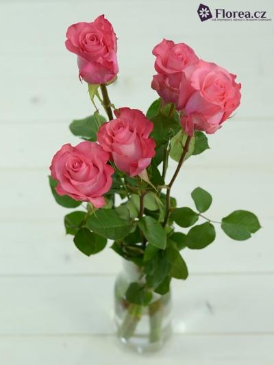 ROSA PINK LOVE 70cm