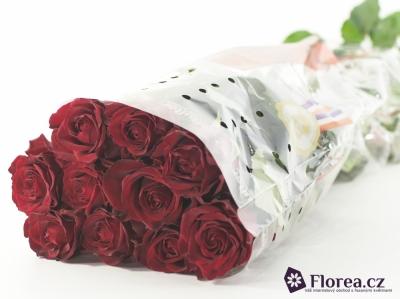 Červená růže RED KNIGHT 70cm