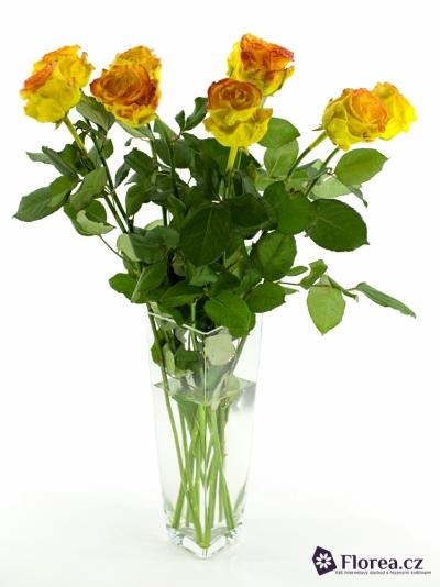 Oranžová růže WAX ORANGE 70CM