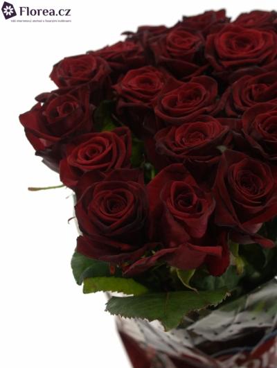 Rudá růže GRAND PRIX