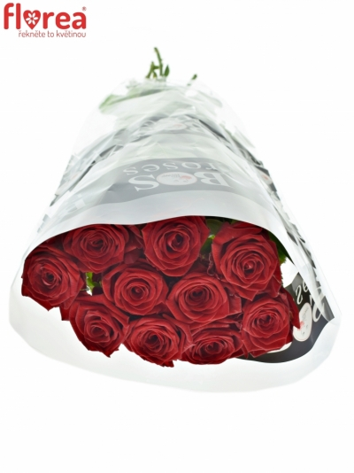 ROSA RED NAOMI! 50cm (L)