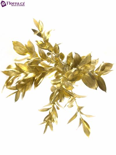 RUSKUS IZRAEL GOLD +GLITTERS 50cm