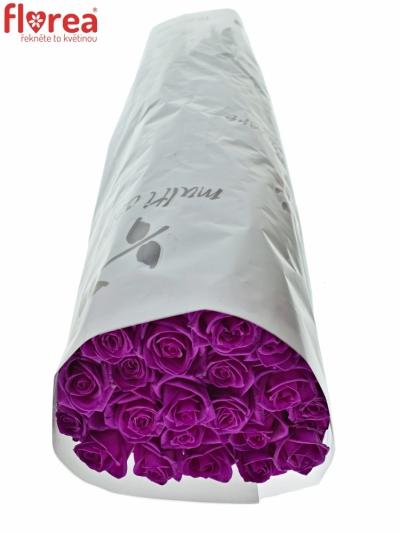 ROSA CERISE VENDELA - RŮŽOVÁ RŮŽE 80cm