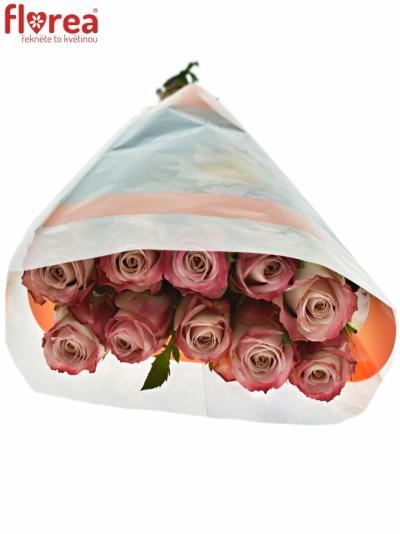 ROSA CLASSY ALISON 50cm (L)