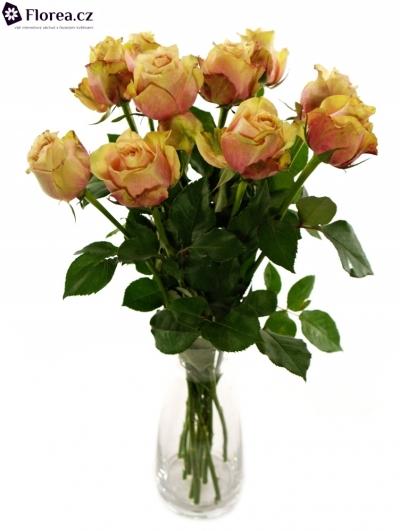 Růžová růže SECRET LOVE