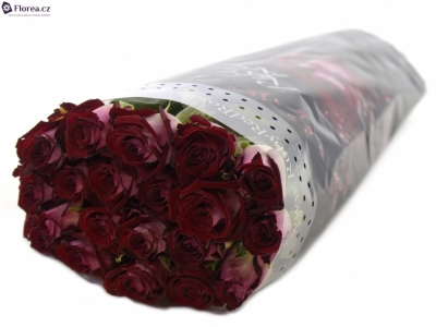 ROSA RUBY RED 80cm