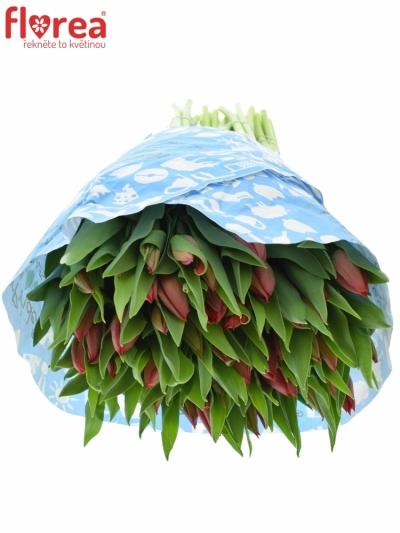 Tulipán EN STRONG LOVE 42cm/42g