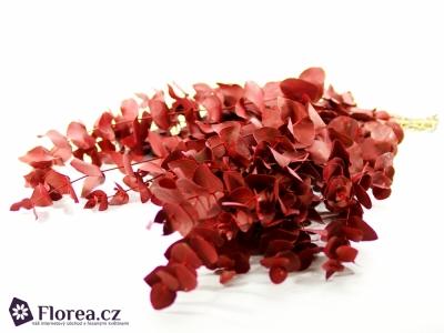 EUCALYPTUS CINEREA RED 250g
